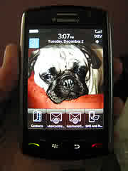 F/S:BlackBerryStorm$300usd, BlackBerryBold$250usd, HtcPro2 300usd.